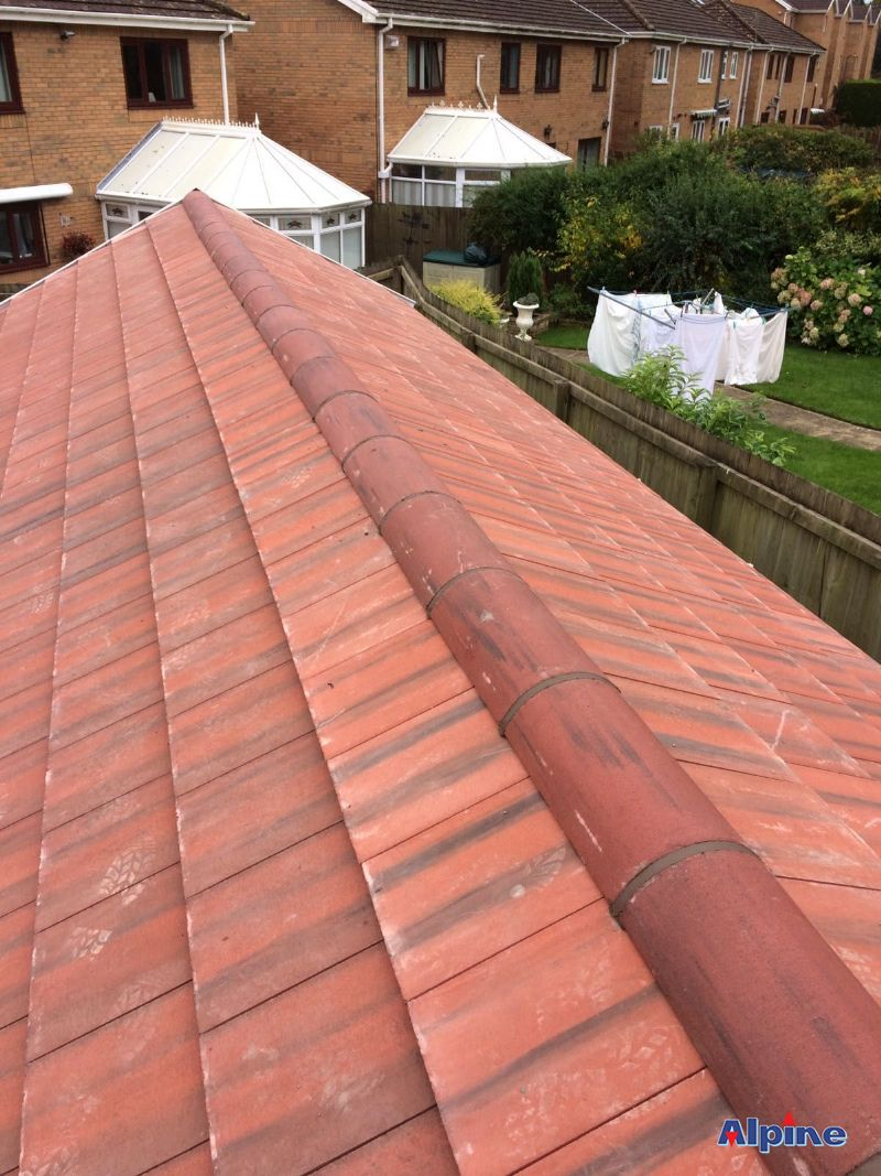 Alpine Swansea Roofing Services Your Local Swansea Roofer